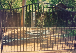 Custom Designed Iron Gate